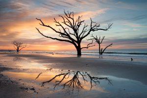 Boneyard Beach, South Carolina